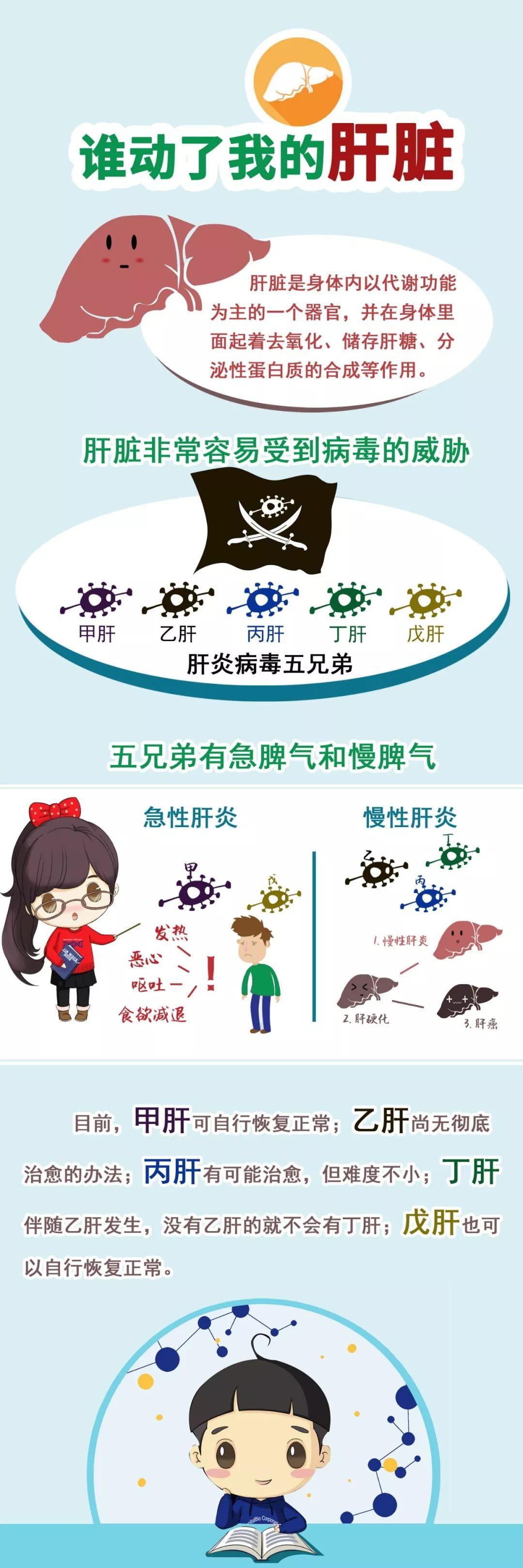 肝炎 b 型