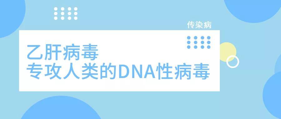 """专攻人类的DNA型病毒!乙肝竟是人类传染病史""""头号天敌""""?"""