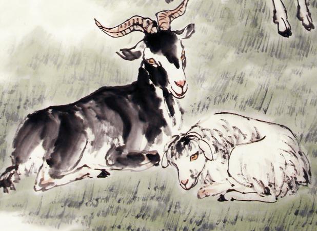 属狗人和哪个生肖是天生一对?一见钟情忘不了,不结婚就可惜了