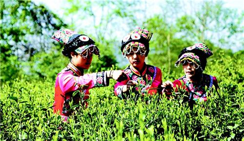 北川文化|茶马古道的悠悠往事