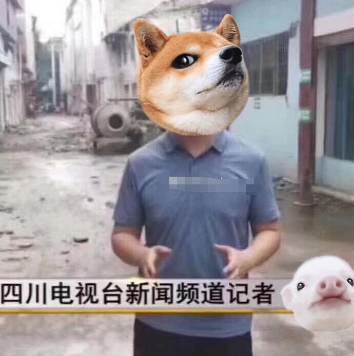 四川电视台暗访记者是谁 硬核视频引网友热议具体事件始末