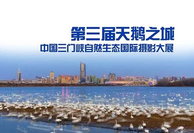 第三届天鹅之城|中国三门峡自然生态国际摄影大展征稿启事
