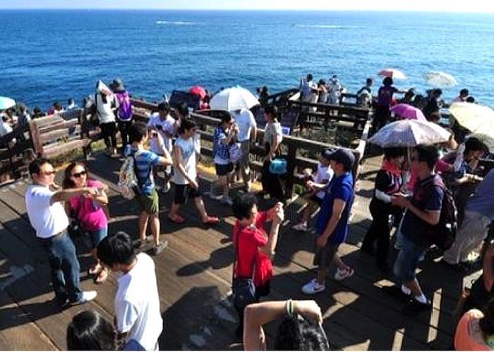 此国万人请愿取消对中国游客免签,如今却无人气,网友:自作自受