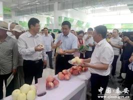 <b>秦安县组团参加2019甘肃特色农产品贸易洽谈会</b>
