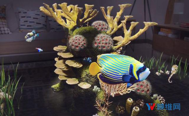 《Undersea》登陆Magic Leap One,让你欣赏神奇水下生命