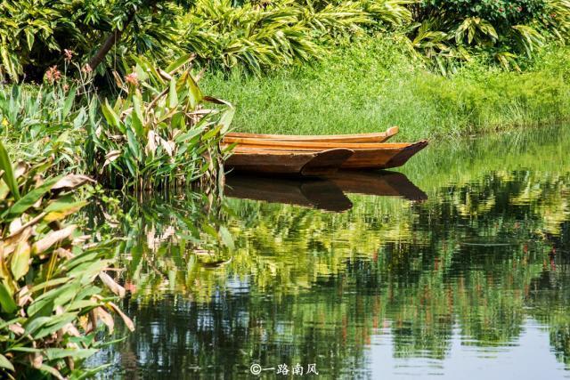 除了长隆,广州还有个美如画境的湿地公园,很多外地游客却不去!