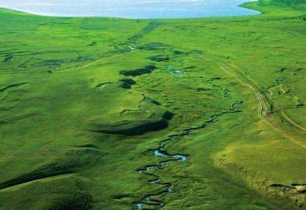 全球最窄河流,大鱼会被卡住,一本书可当桥