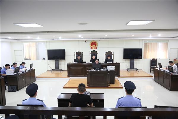 镇平法院院长担任审判长、检察长担任公诉人 公开审理涉黑案件