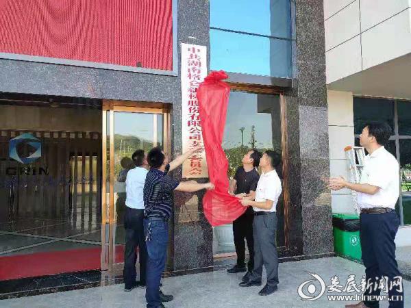 娄星工业集中区与非公企业联合开展主题党日活动