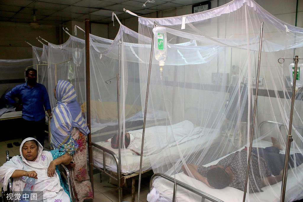 孟加拉国遇史上最严重疫情,一日内超千人患登革热