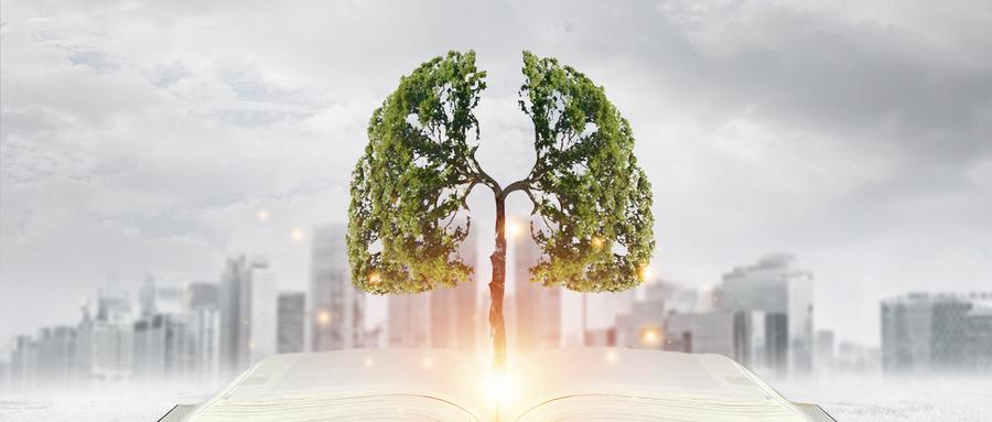 <b>宣讲家文稿丨资源型城市生态经济系统分析案例</b>