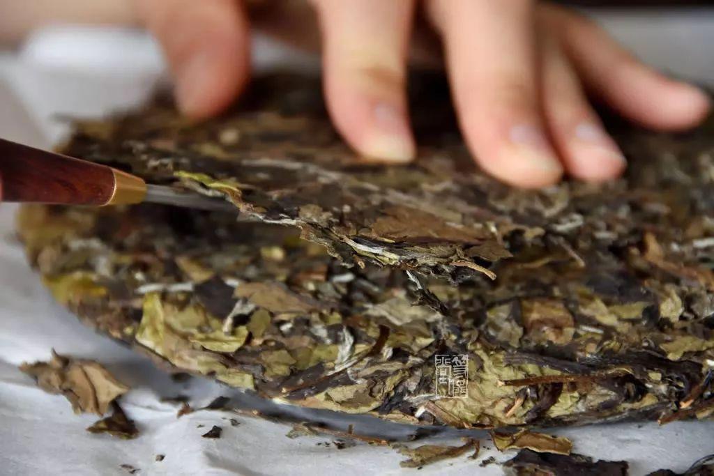 白茶饼的完美拆解教程 | 视频+长文