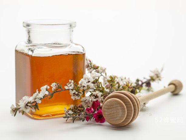 蜂蜜活性可以维持多久?