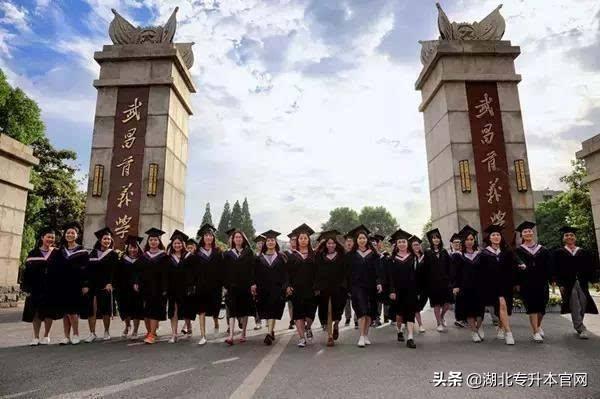 2019年武昌首义学院普通专升本考试录取分数线