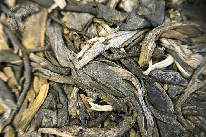 普洱生茶很多人都不知道怎么喝