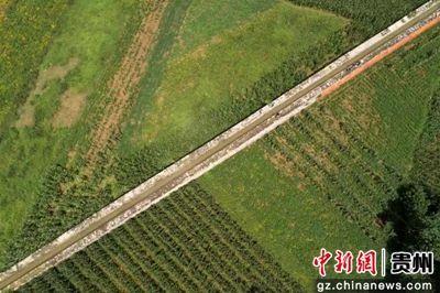 贵州黔西:百里人工渠 又见活水来