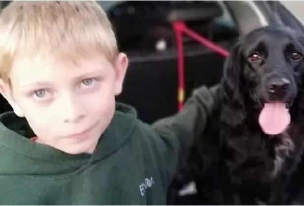 小男孩伊桑(ethan ferrier)在两岁时失去了他最好的朋友,爱犬fern.