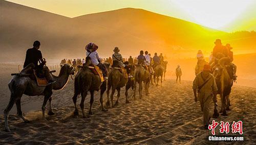 敦煌旅游持續升溫 鳴沙山下大漠駝隊宛如長龍