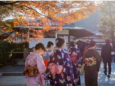 365天死了465家,日本百年老店创纪录倒闭背后直面一个残酷现实