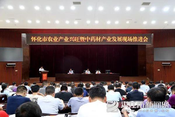 微洪江|怀化市农业产业兴旺暨中药材产业发展现场推进会在我市召开