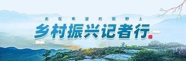 """啥是""""一编三定""""?让全省各地都跑到许昌这个村学习……"""