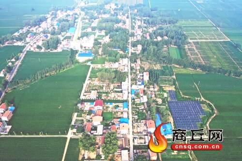 绿色包围下的民权县北关镇刘楼村景色如画