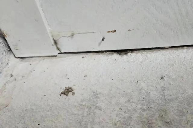 木地板被泡发半年多纠纷难解?千思装饰:公司不承担责任