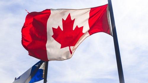 优劣大对比:加拿大枫叶卡VS临时签证VS入籍
