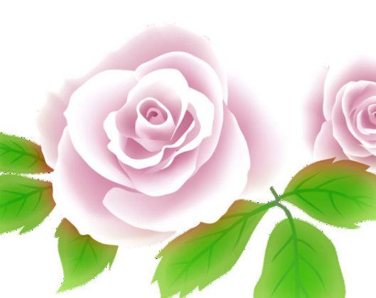 3生肖责任感强,对另一半忠诚,财运越来越旺,感情也是甜甜蜜蜜