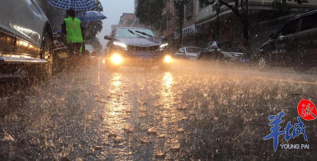 广东部分市县4日仍有明显降雨,未来几天气温渐升