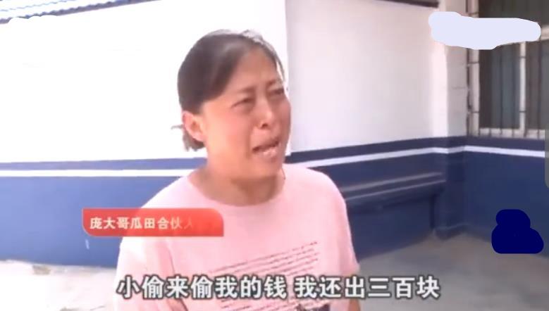 """周蓬安:西瓜被偷还要倒赔300元,处警水平""""高"""""""