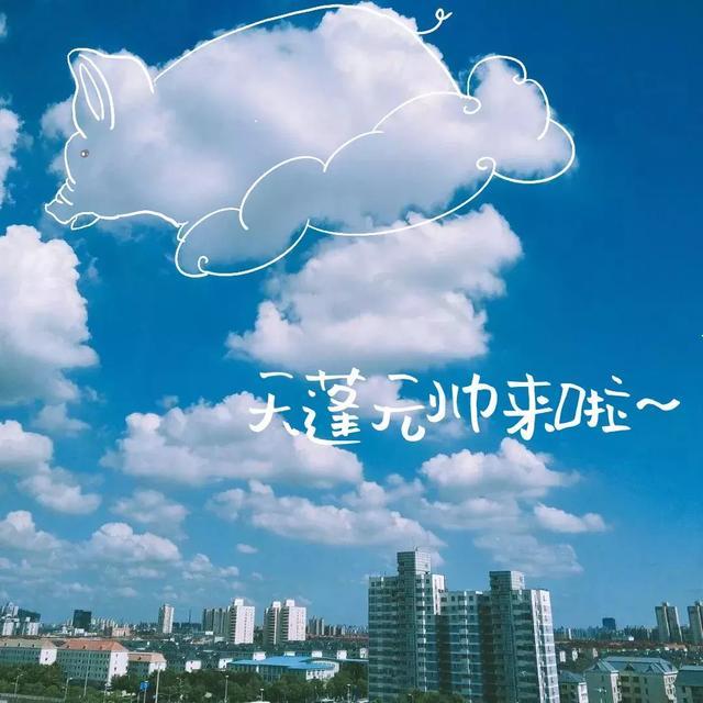 申晨间  |  昨天魔都申城的天空好似画板!看看都有哪些萌物成为主角?