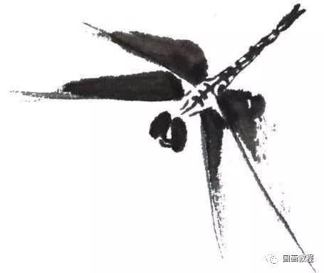 蜻蜓姬的大�_【国画教程】蜻蜓,蝗虫的简单画法