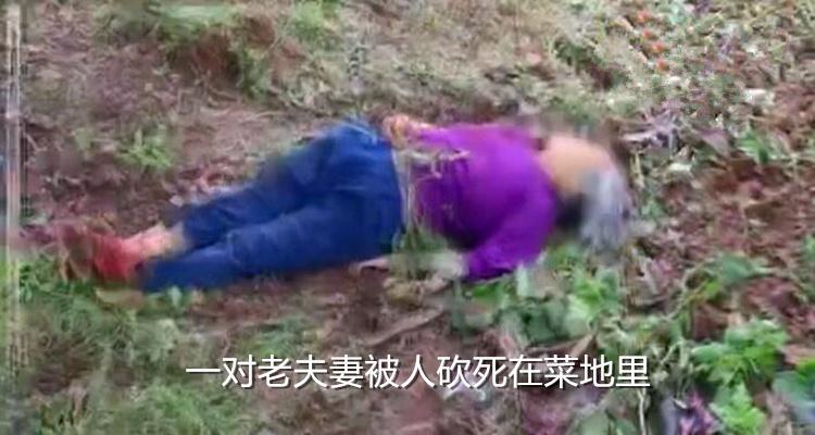 四川男子无力偿还赌债,掐死女友又砍死一对老夫妻,笑问警察:佩服不