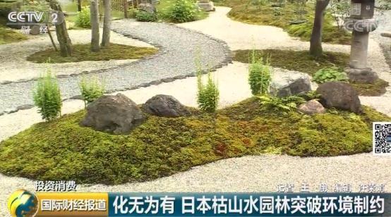 """化无为有!日本园林景观""""枯山水""""既能欣赏又能吃"""