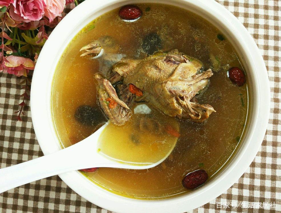 原创秘制鸽子汤来了,出锅那瞬间我口水直流,老婆喝的汤渣都不剩