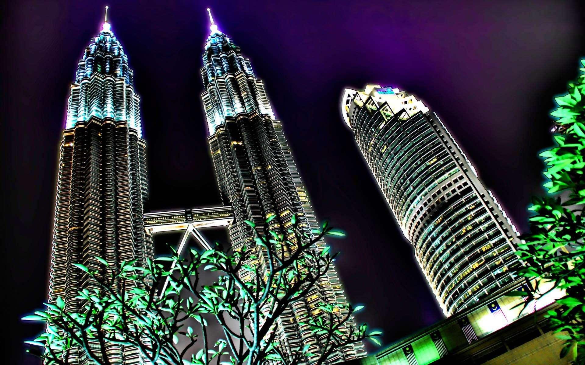 马来西亚华人人口数量变化_马来西亚华人美女