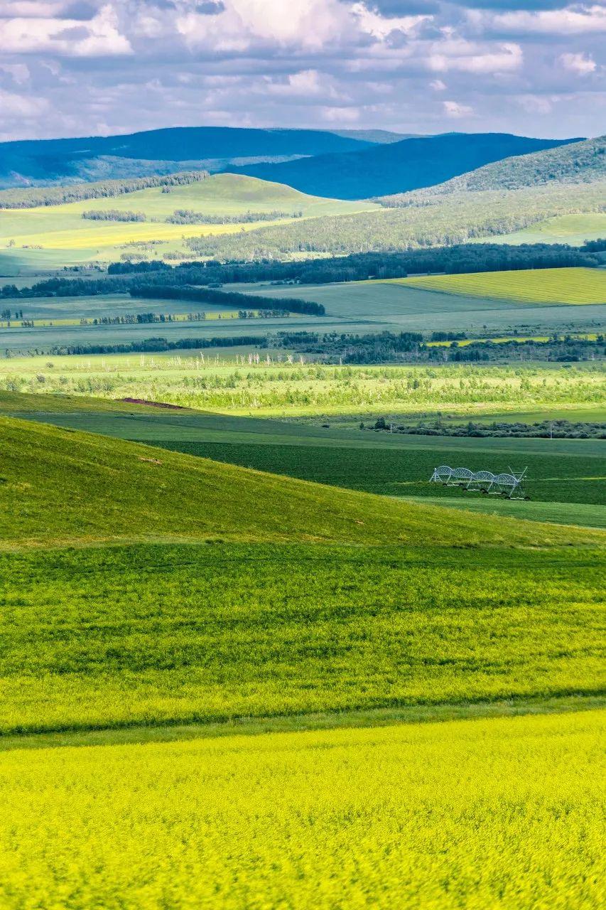 <b>内蒙古的夏天,简直要逼疯摄影师!</b>