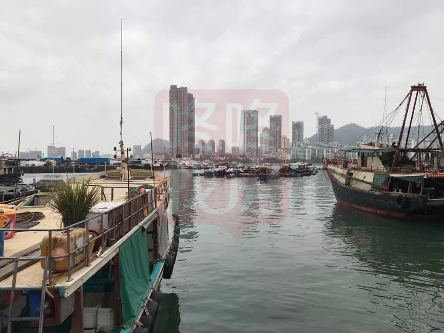 <b>蛇口渔人码头大变样,化身深圳湾海景公寓,你期待吗?</b>