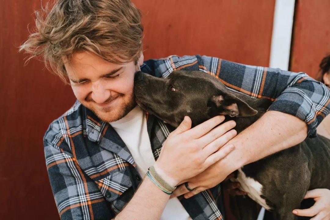 <b>狗狗舔你只是在表达爱你的心吗?大错特错</b>