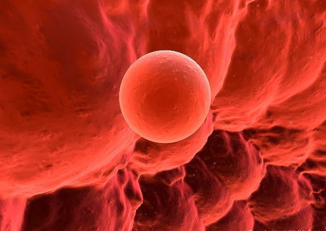 <b>女人一个月排几次卵?排卵时,身体可能会出现这3个感觉</b>