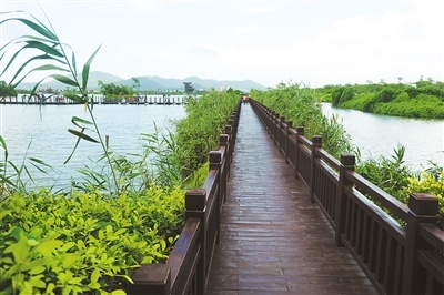珠海全力打造生态廊道 横琴天沐河清淤及景观建设年底前完工