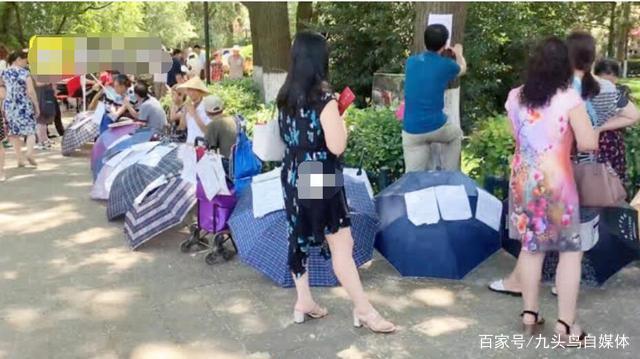 相亲角见闻:首都女博士成困难群体,重庆1.75米男士成稀缺资源