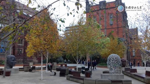 2019年英国纽卡斯尔大学部分本科专业接受国内高考成绩