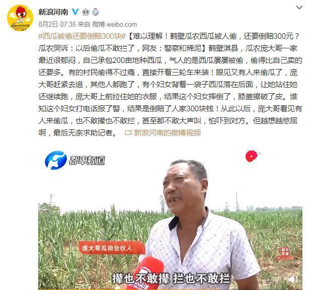 """人民日报为吃""""瓜""""群众发声:""""偷""""""""摘""""分不清,违法何所惧?"""