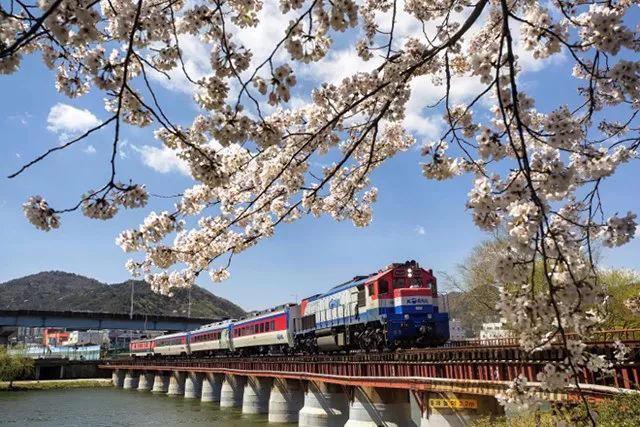迷人的新时代,迷人的铁路摄影