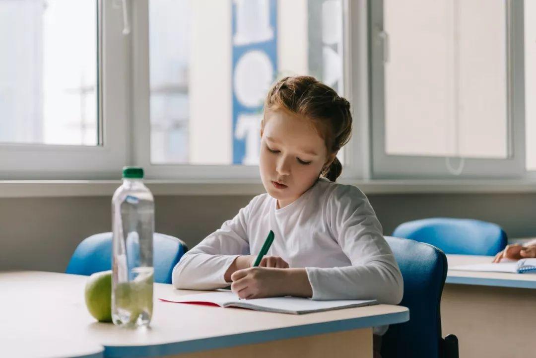 小学1—6年级13个重点模块知识点汇总,快给孩子收藏!