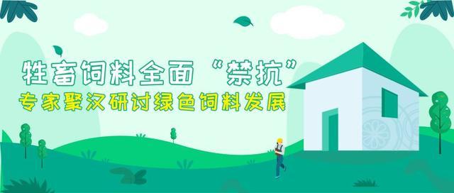 """牲畜饲料全面""""禁抗""""专家聚汉研讨绿色饲料发展"""