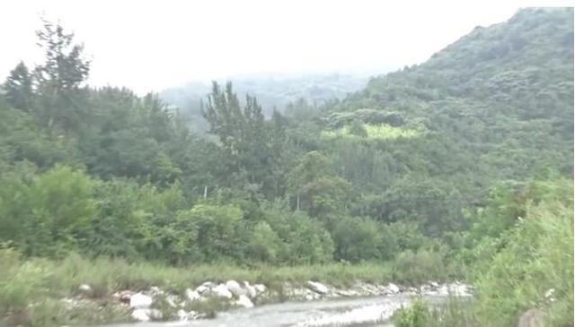 西安4名游客被困黑河森林公园,3人获救,1人自救反造意外身亡