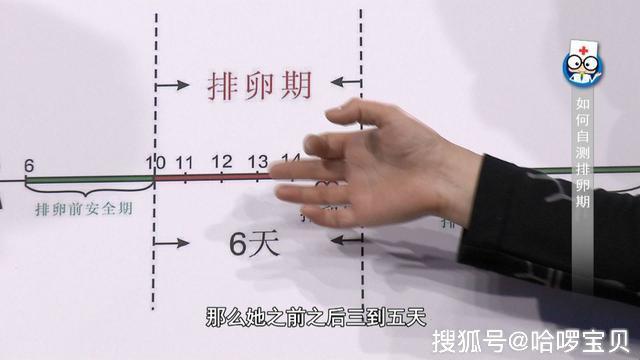 排卵试纸什么时候用_试纸、基础体温、B超,如何计算排卵期?这个方法容易做到还 ...